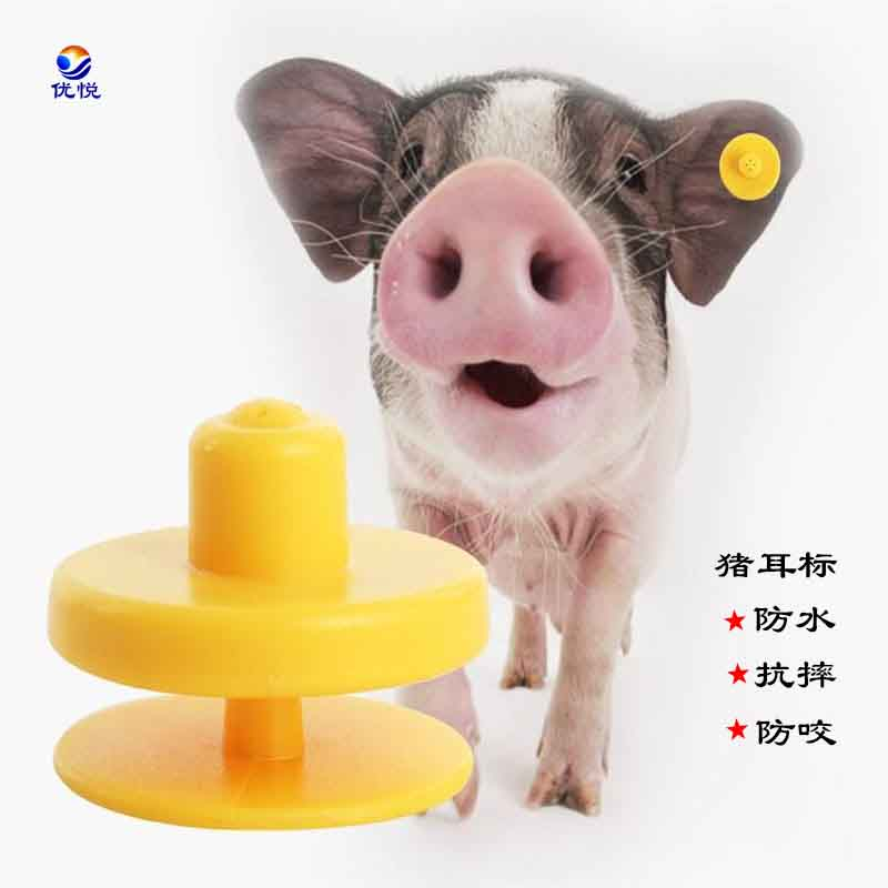 EM4305电子动物猪耳标订制