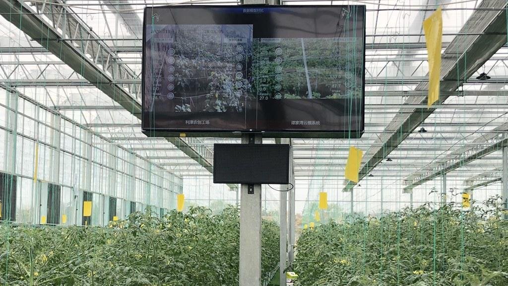 5G+智慧新农业:浙江电信助力打造云上农业试验场