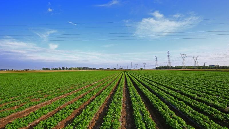 关于智慧农业,这两大技术及其应用你了解吗?