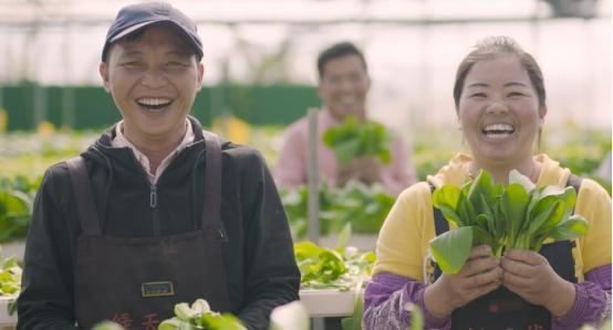 广东增城中新:智慧农业带动乡村振兴