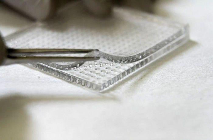 科学家开发新型微针贴片 可穿透生物膜治疗慢性伤口